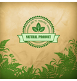 Natural organic herbal composition vector