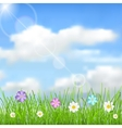 Background with sky clouds grass and flowers vector