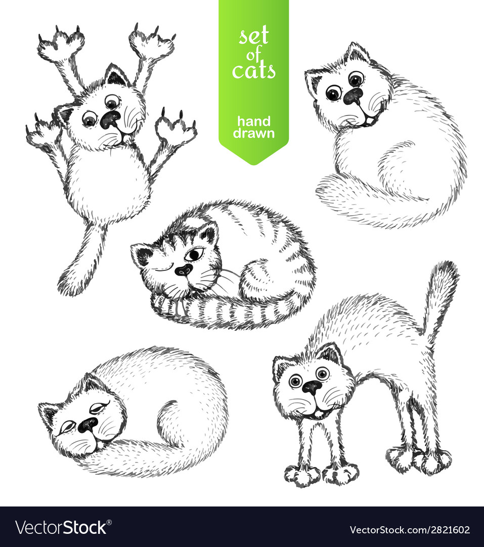 Cats set vector | Price: 1 Credit (USD $1)