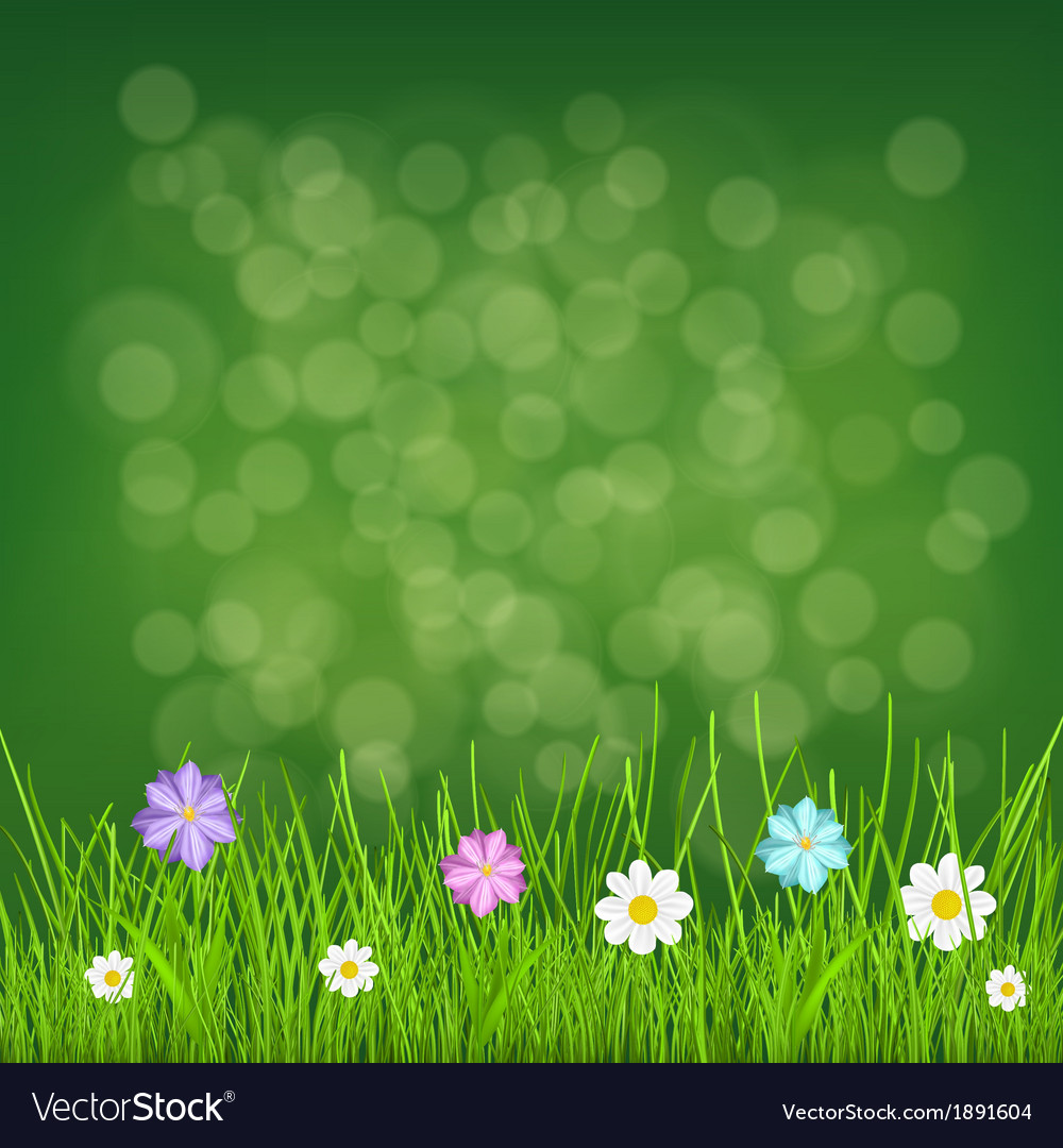 Background with grass and flowers vector | Price: 1 Credit (USD $1)