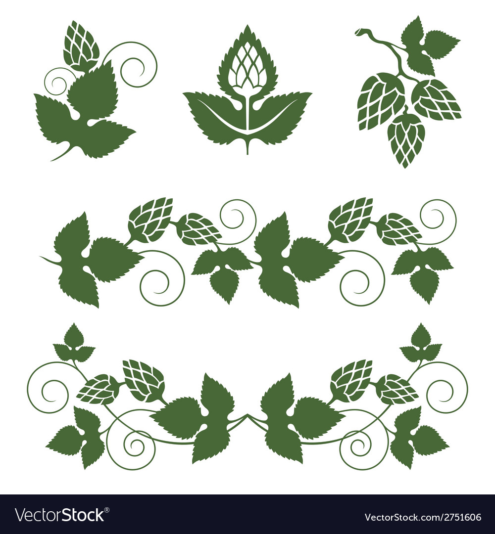 Hop borders and design elements vector | Price: 1 Credit (USD $1)