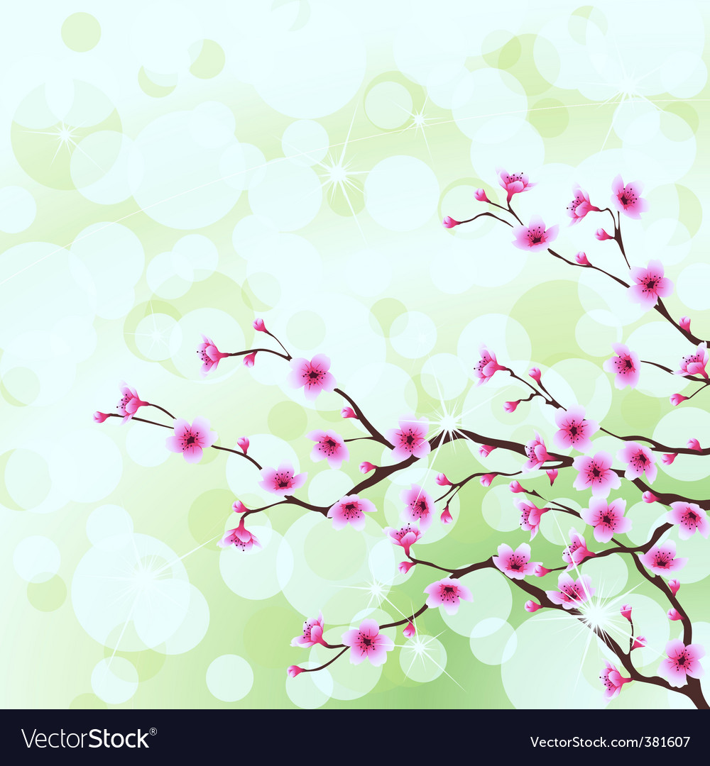 Cherry tree blossoms vector | Price: 1 Credit (USD $1)