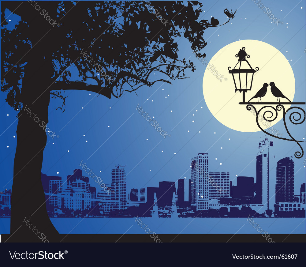 Urban night scene idyllic vector