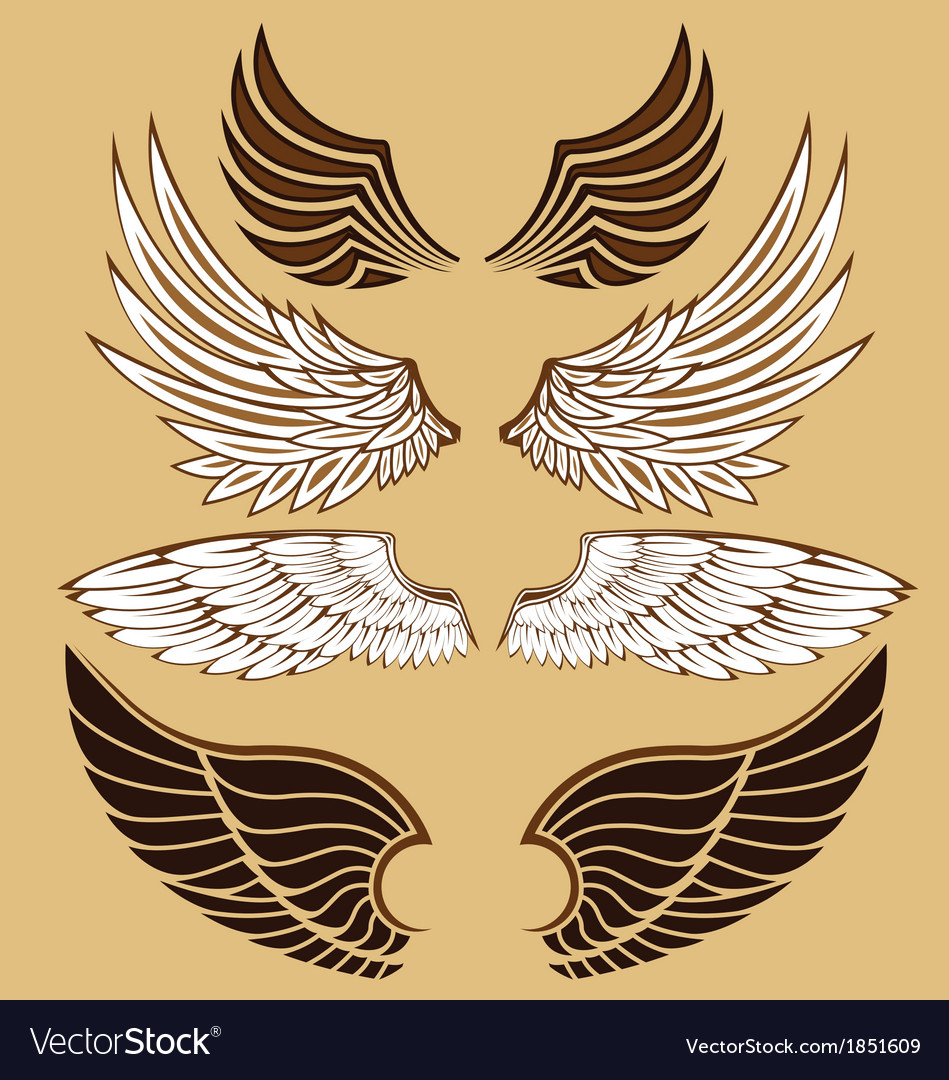 Wing set vector | Price: 1 Credit (USD $1)