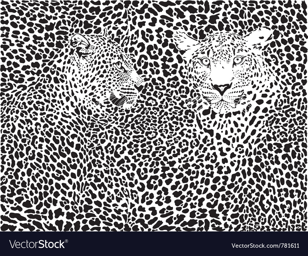 Leopard pattern background vector | Price: 1 Credit (USD $1)