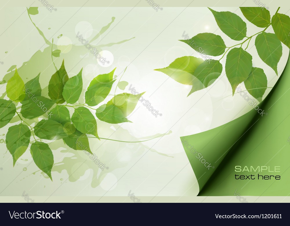 Nature background with green spring leaves vector | Price: 1 Credit (USD $1)