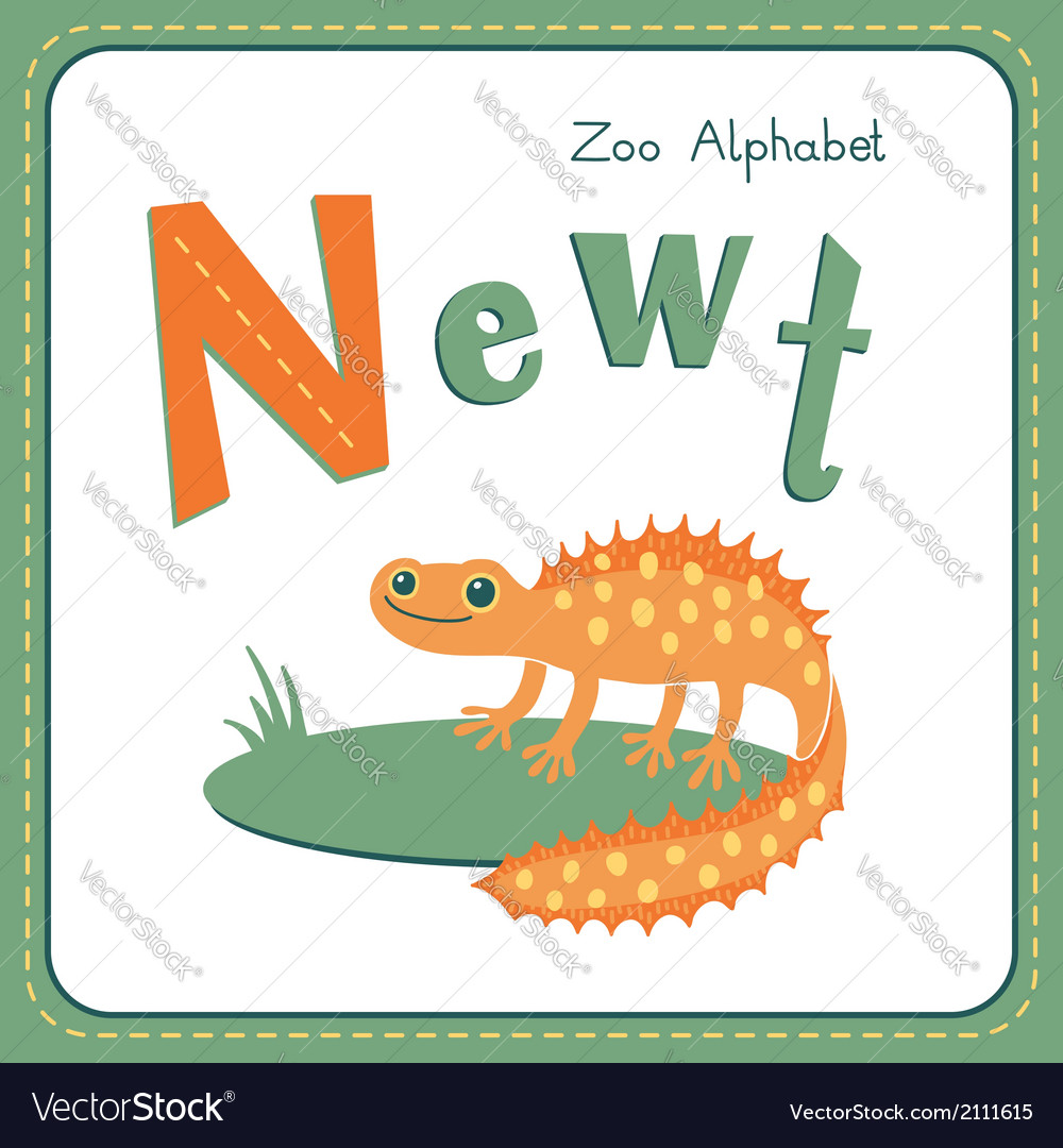 Letter n - newt vector | Price: 1 Credit (USD $1)