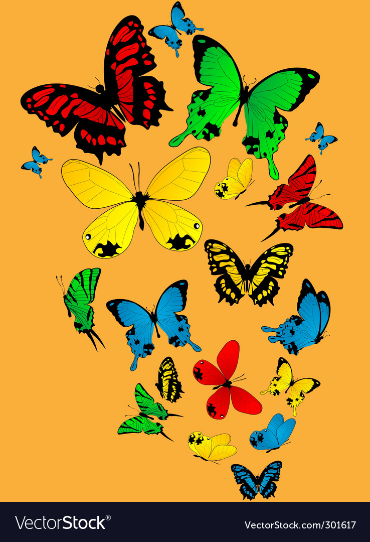 Colourful butterflies vector | Price: 1 Credit (USD $1)