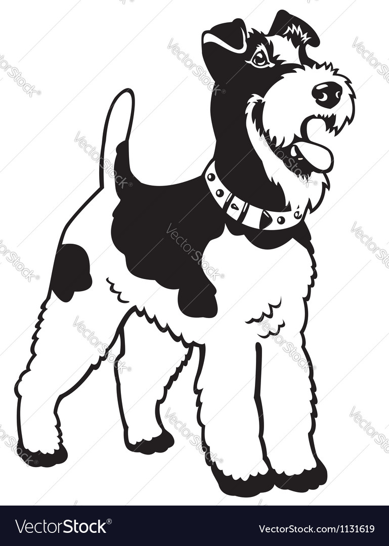Fox terrier black white vector | Price: 1 Credit (USD $1)