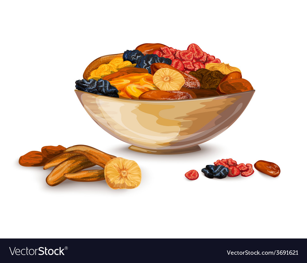 Dried fruits composition vector | Price: 1 Credit (USD $1)