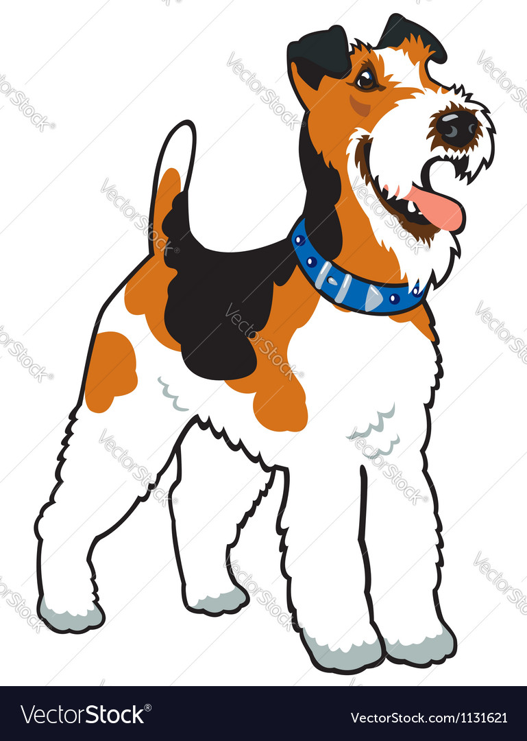 Fox terrier vector | Price: 1 Credit (USD $1)