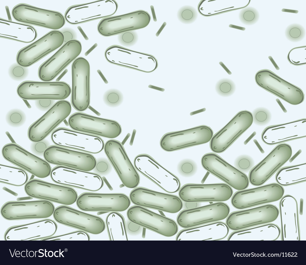 Bacteria vector | Price: 1 Credit (USD $1)