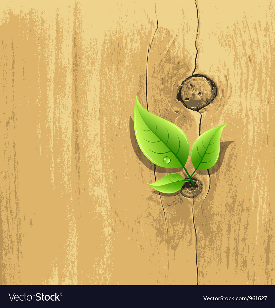 Green leaf on old wood background vector | Price: 1 Credit (USD $1)