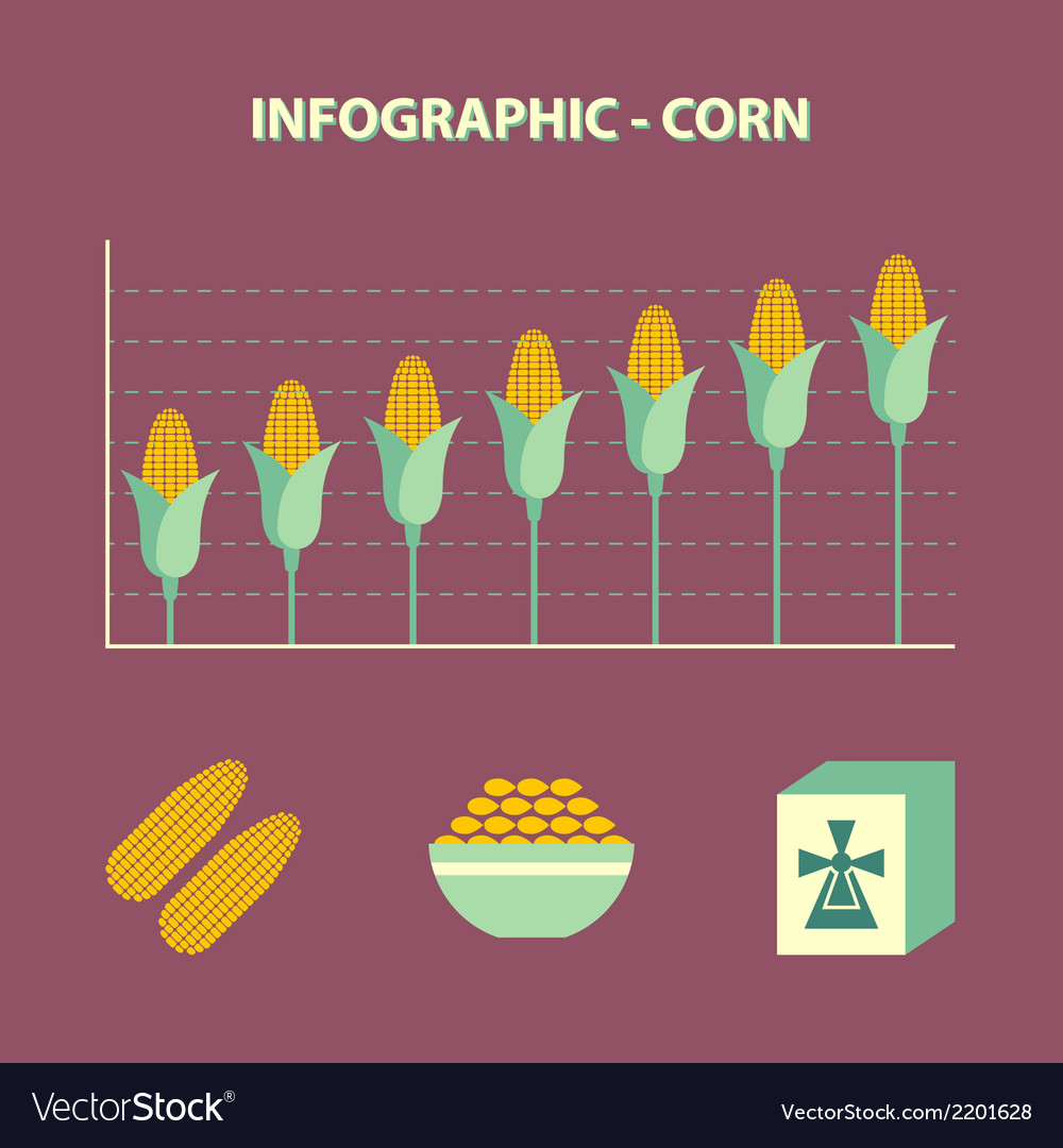 Increase corn price vector | Price: 1 Credit (USD $1)