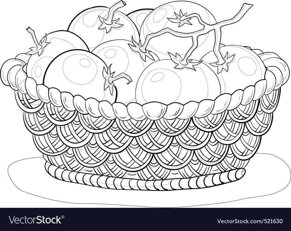 Basket with tomatoes contours vector | Price: 1 Credit (USD $1)