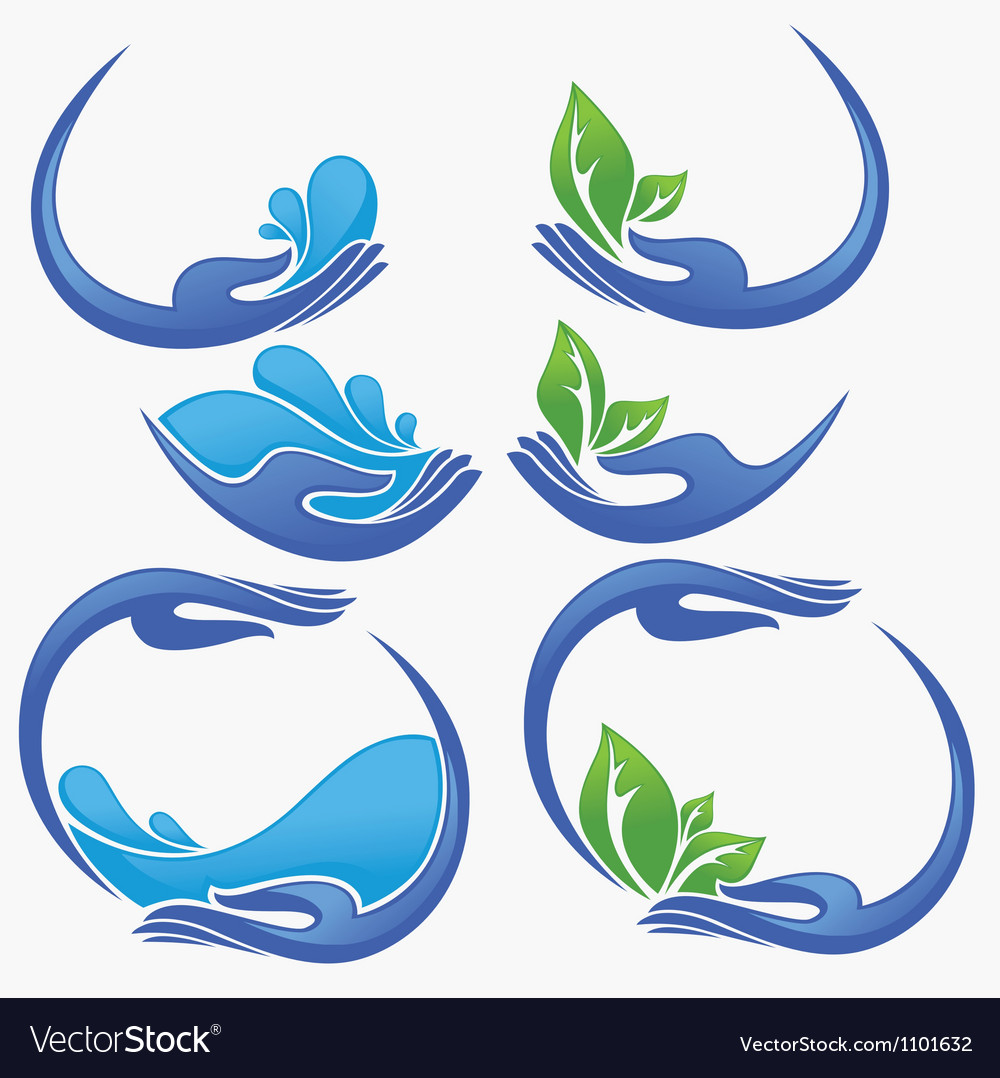 Clean women hands fresh water and green leaves vector | Price: 1 Credit (USD $1)