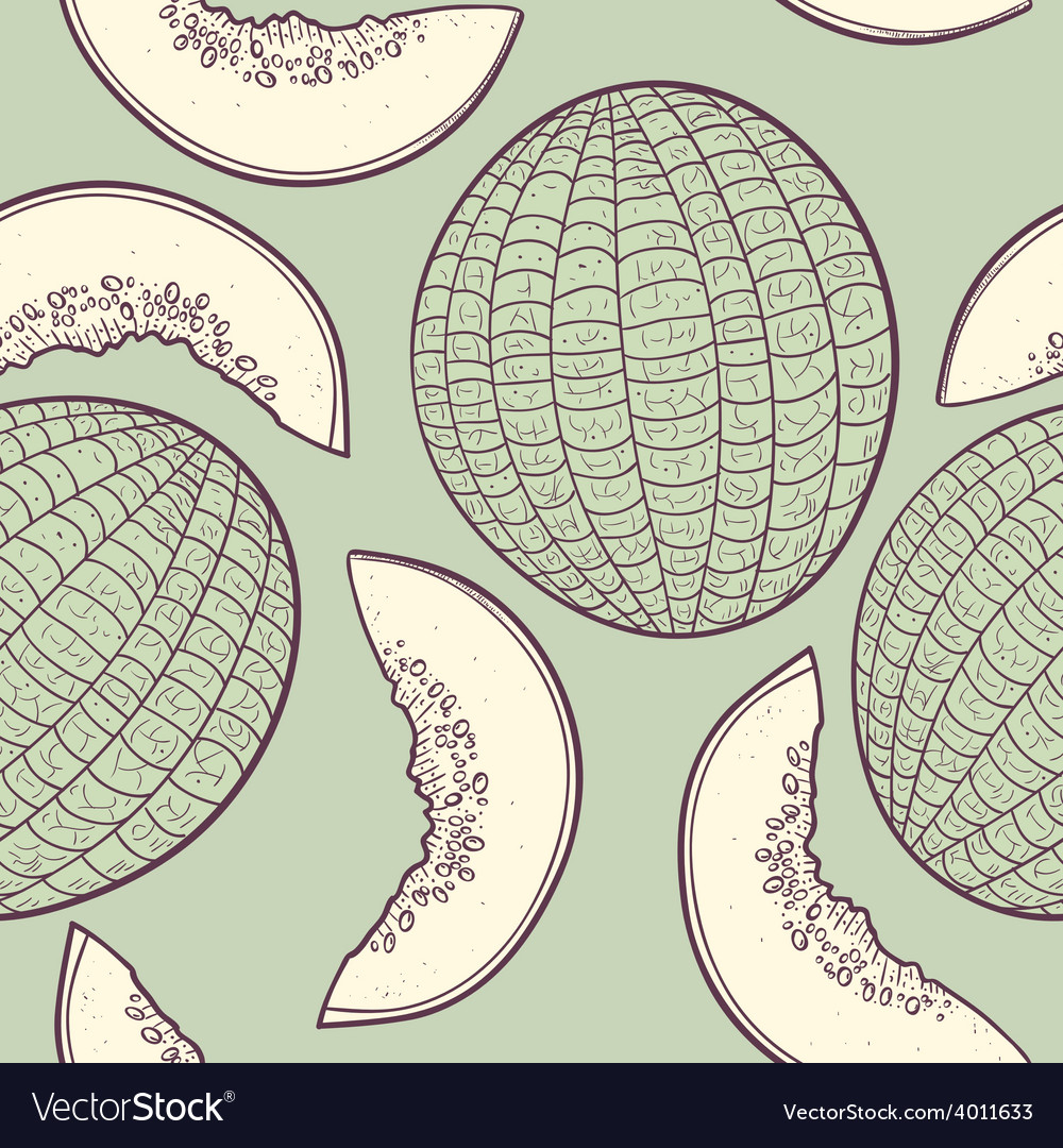 Stylized seamless pattern with melon vector | Price: 1 Credit (USD $1)