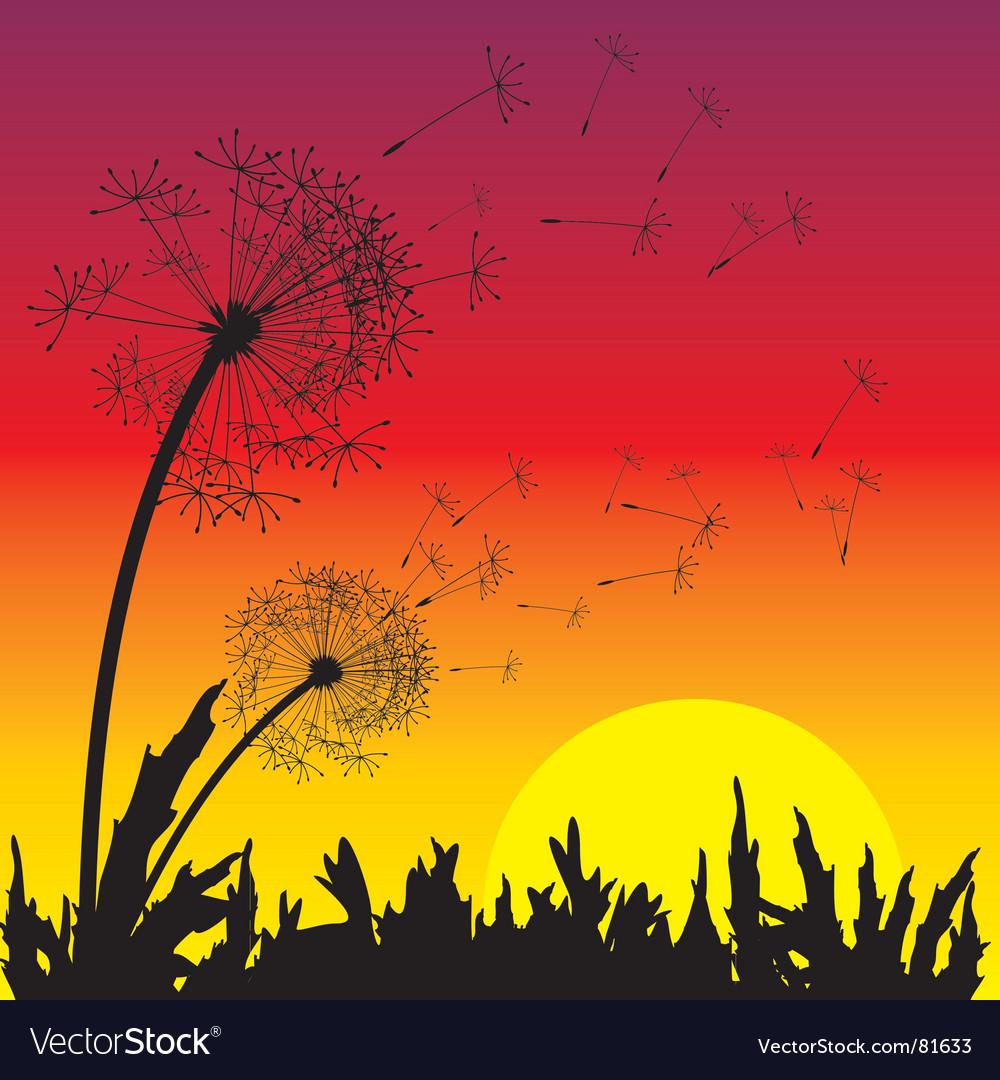 Sunset vector | Price: 1 Credit (USD $1)