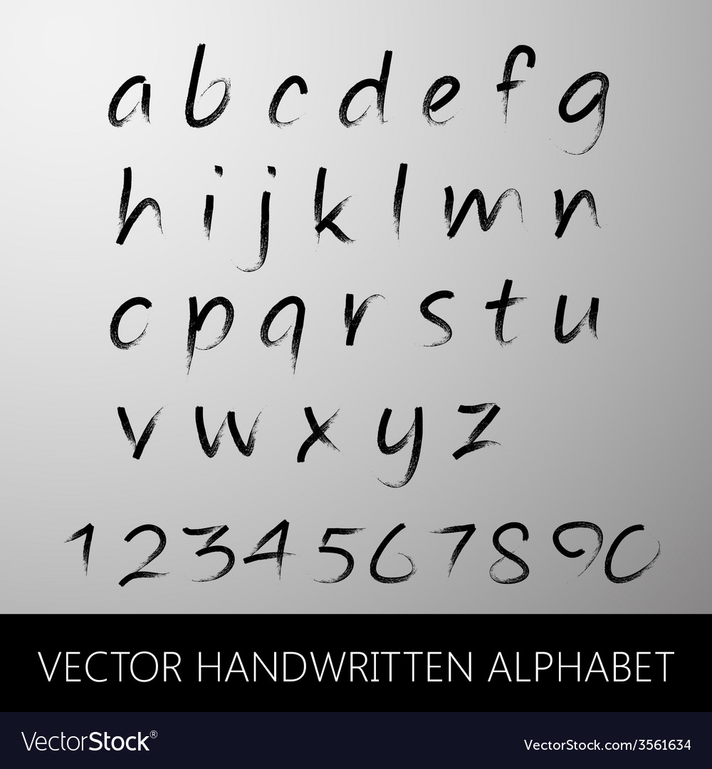 Handwritten alphabet calligraphic brushed letters vector | Price: 1 Credit (USD $1)