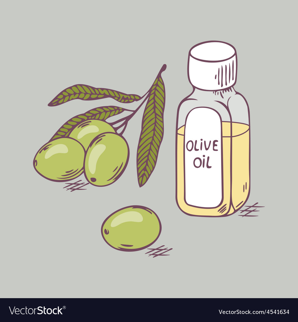 Olive oil in bottle with branch close up doodle vector | Price: 1 Credit (USD $1)