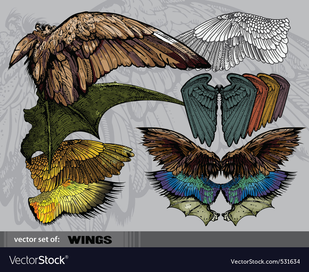 Set of wings vector | Price: 3 Credit (USD $3)