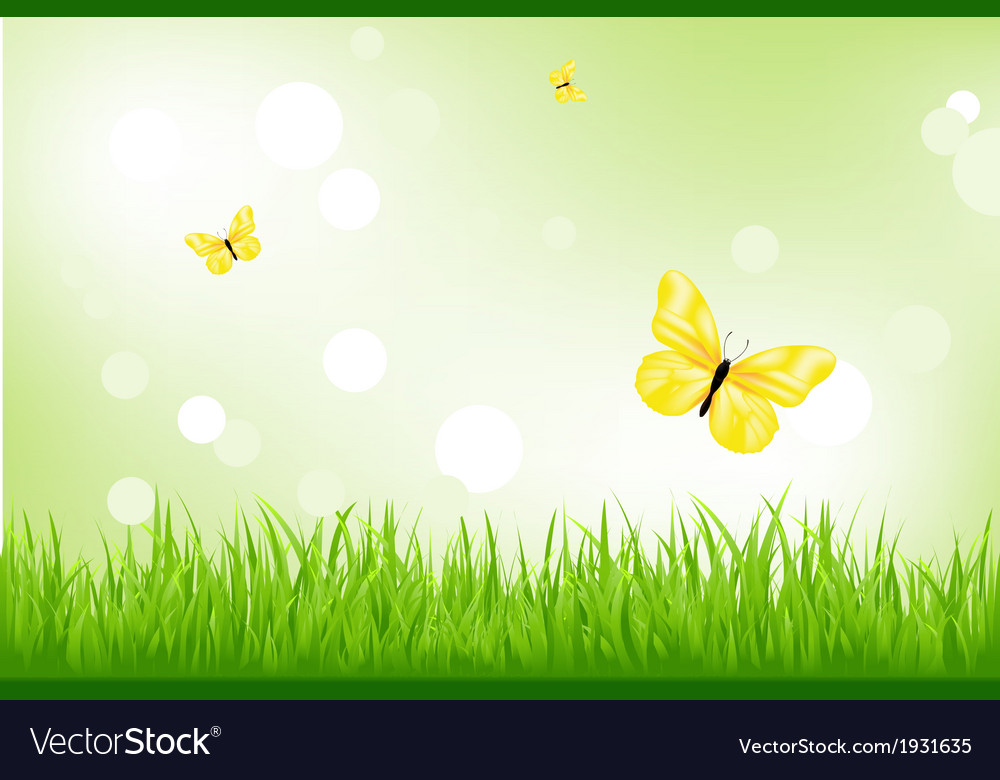 Green grass and yellow butterflies vector | Price: 1 Credit (USD $1)