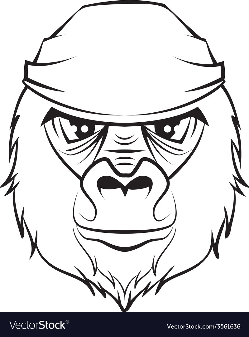 Gorilla head black and white drawing vector | Price: 1 Credit (USD $1)