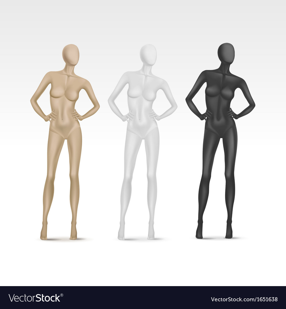 Isolated female mannequin vector | Price: 1 Credit (USD $1)