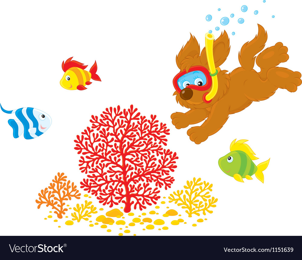 Puppy diver vector | Price: 1 Credit (USD $1)