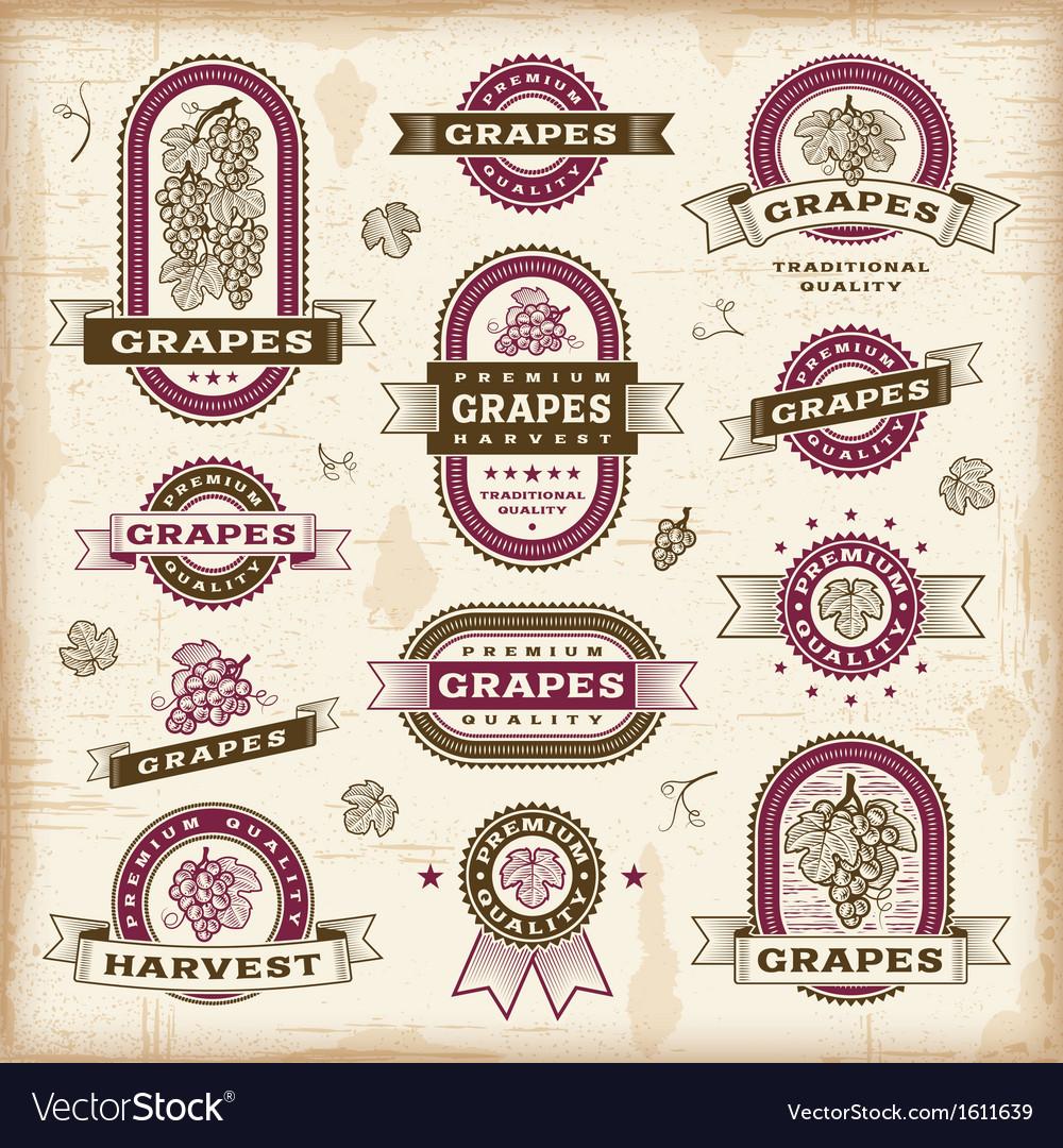 Vintage grapes labels set vector | Price: 1 Credit (USD $1)