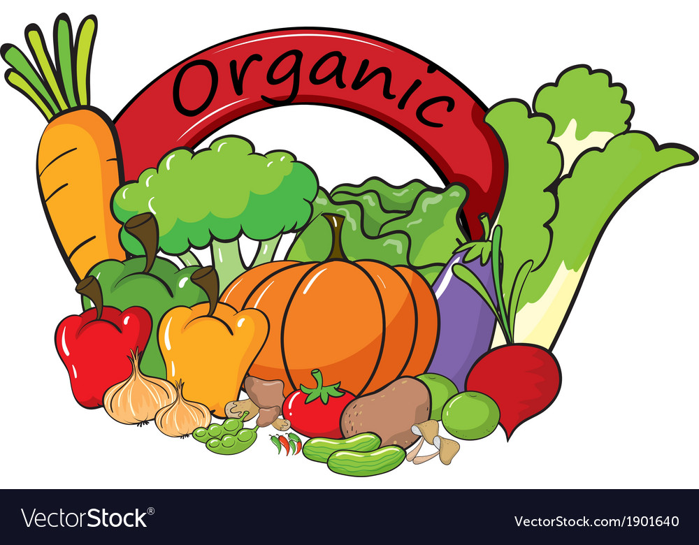 An organic label with vegetables vector | Price: 3 Credit (USD $3)
