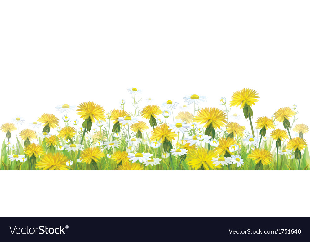 Spring flower isolated vector | Price: 1 Credit (USD $1)