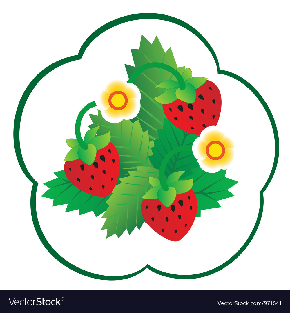 Forest berry vector | Price: 1 Credit (USD $1)