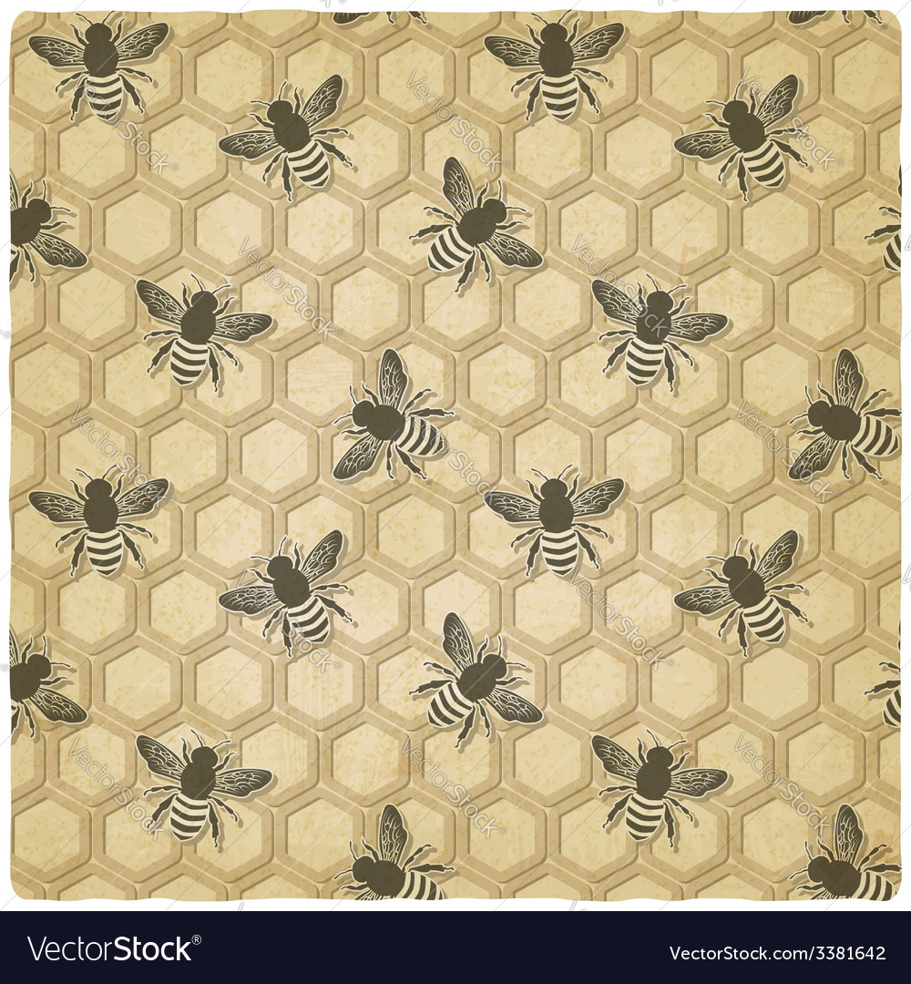 Bee honeycomb pattern vector | Price: 1 Credit (USD $1)