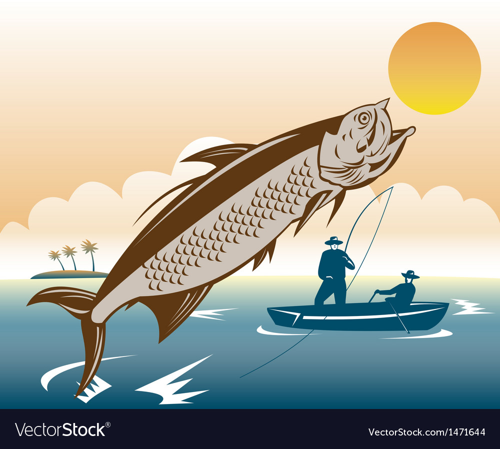 Tarpon fish jumping reeled by fisherman vector