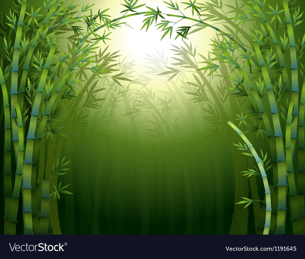 A bamboo rainforest vector | Price: 1 Credit (USD $1)