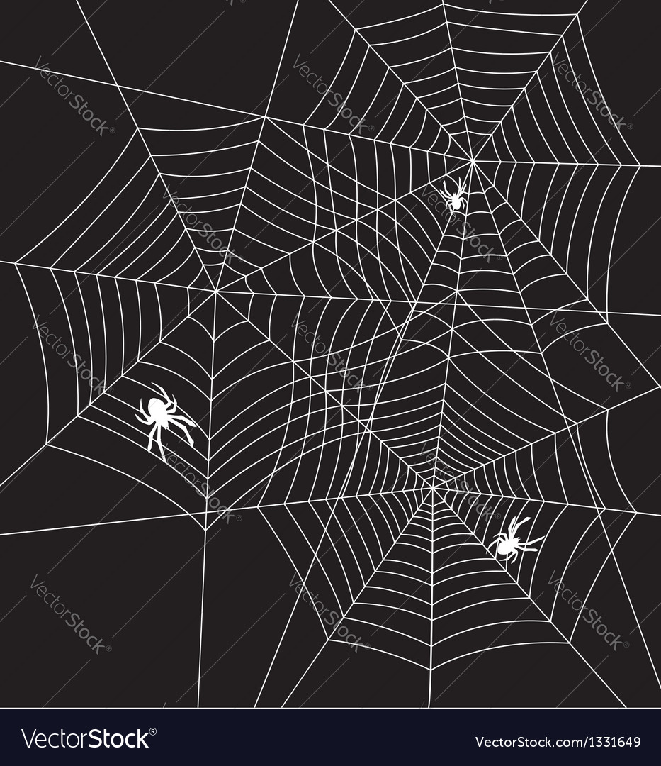 Spiders and webs vector | Price: 1 Credit (USD $1)