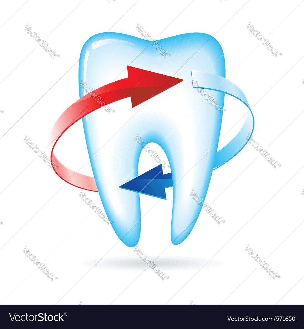 Tooth with arrows vector | Price: 1 Credit (USD $1)