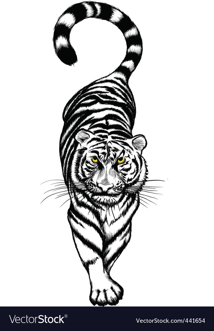Black and white crouching tiger vector | Price: 1 Credit (USD $1)