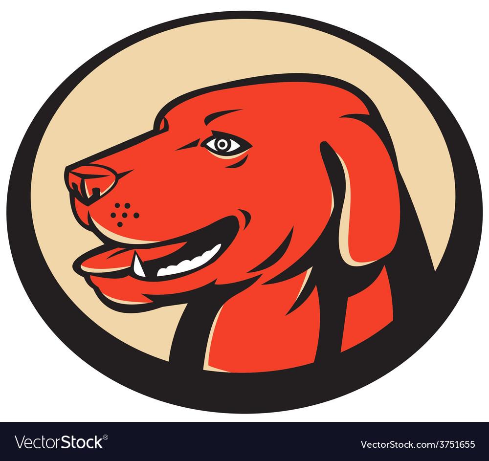 Labrador golden retriever dog head vector | Price: 1 Credit (USD $1)