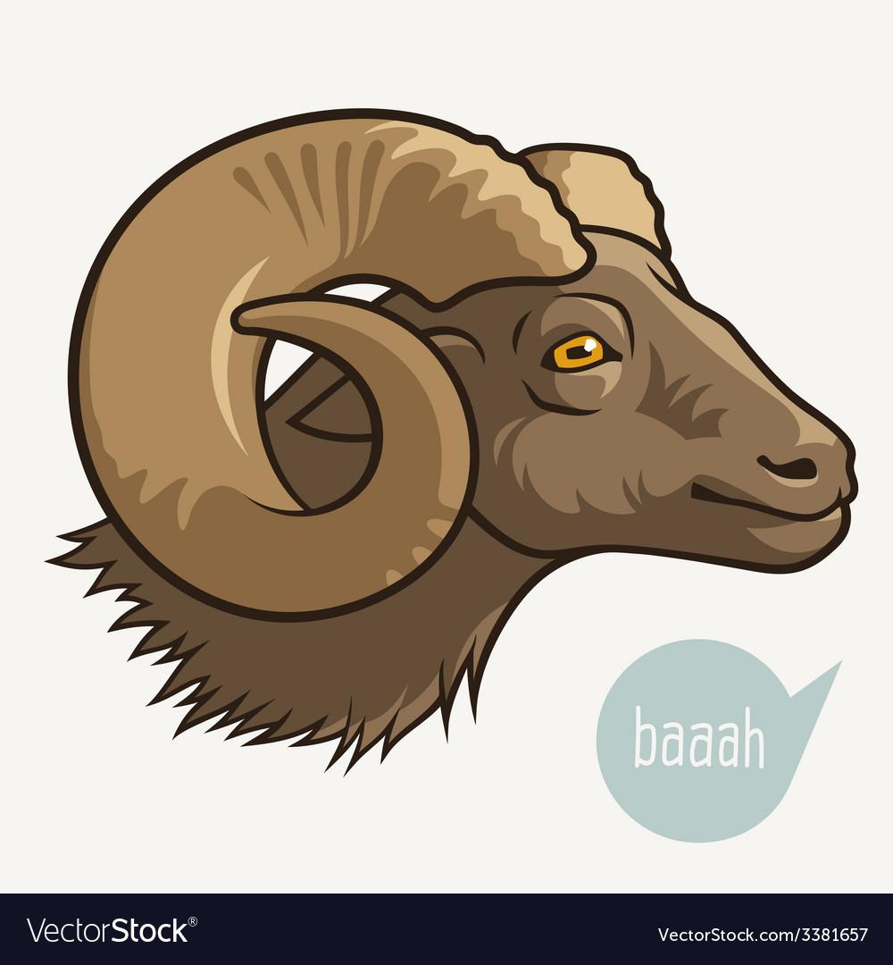 Head of ram vector | Price: 1 Credit (USD $1)
