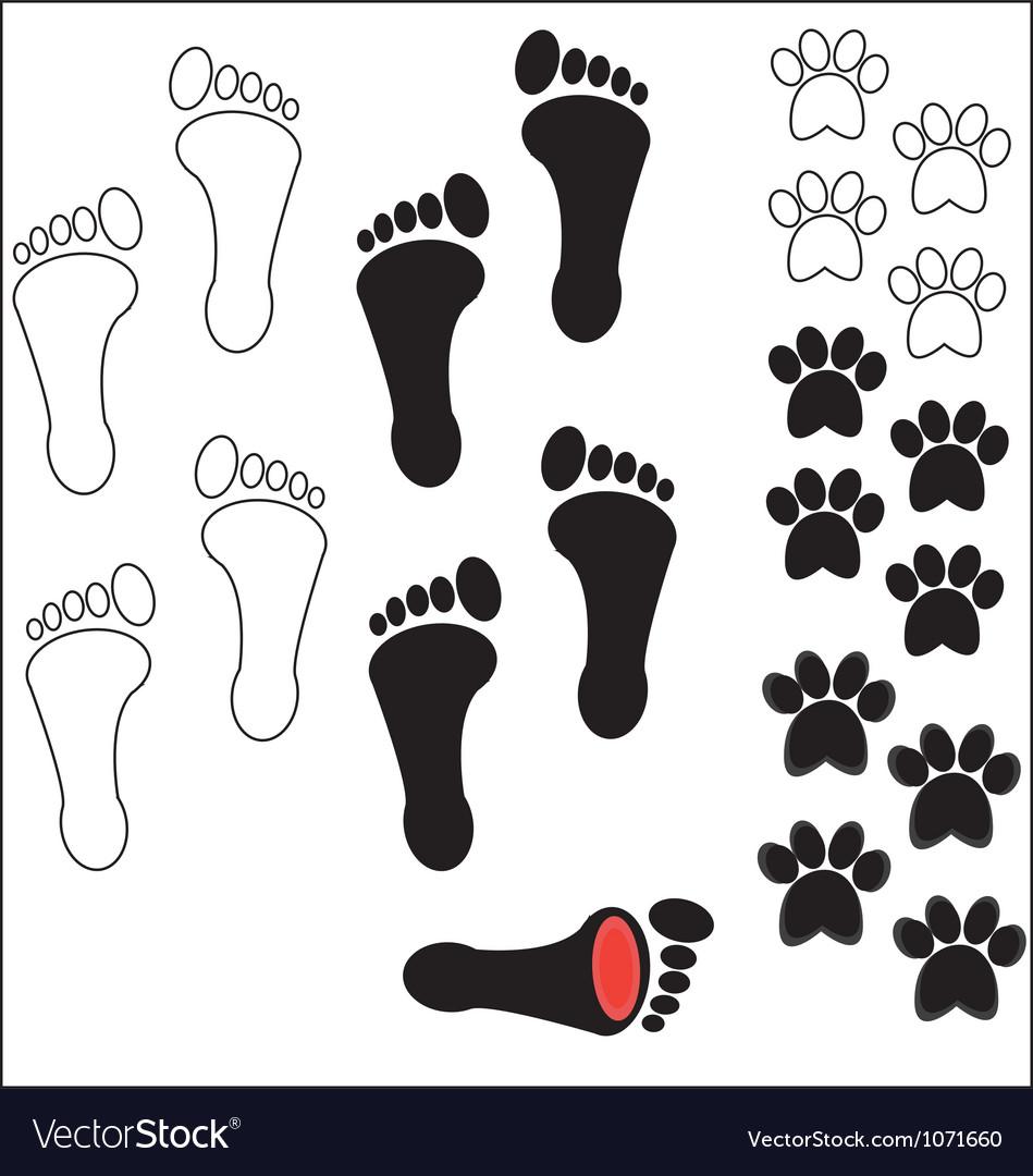 Footprints vector | Price: 1 Credit (USD $1)