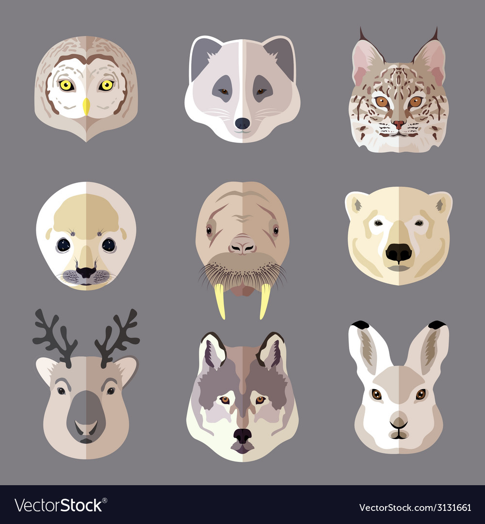 Animal portrait flat icon set vector | Price: 1 Credit (USD $1)