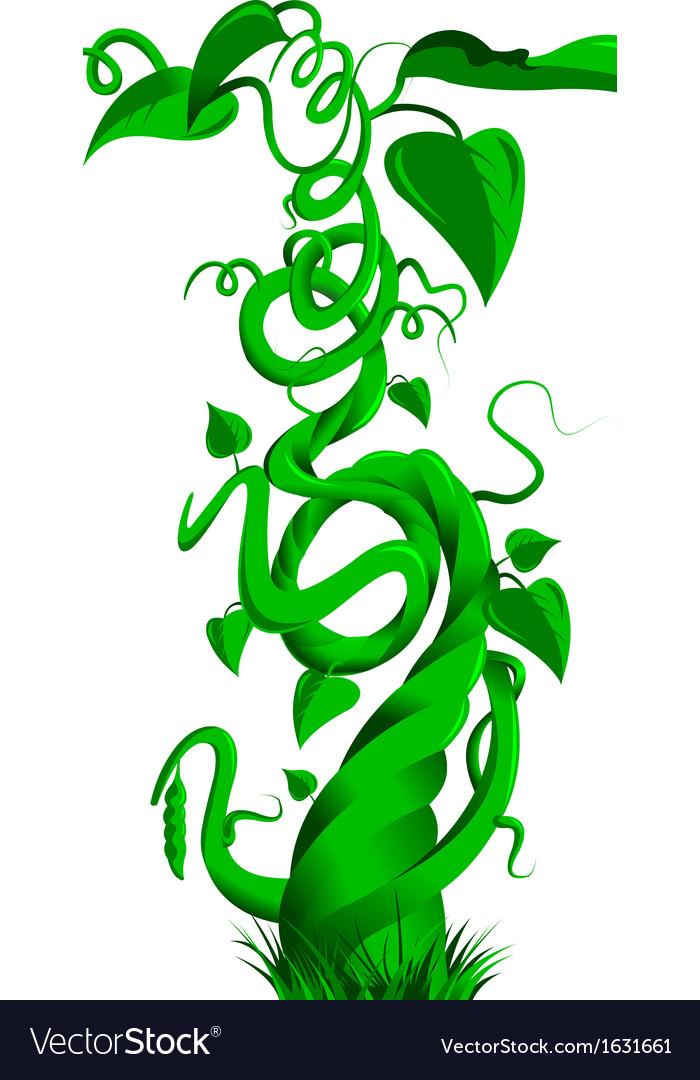 Beanstalk vector | Price: 1 Credit (USD $1)