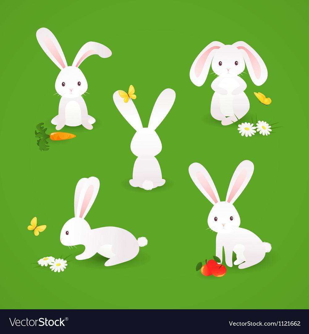 Cute bunnies vector | Price: 1 Credit (USD $1)