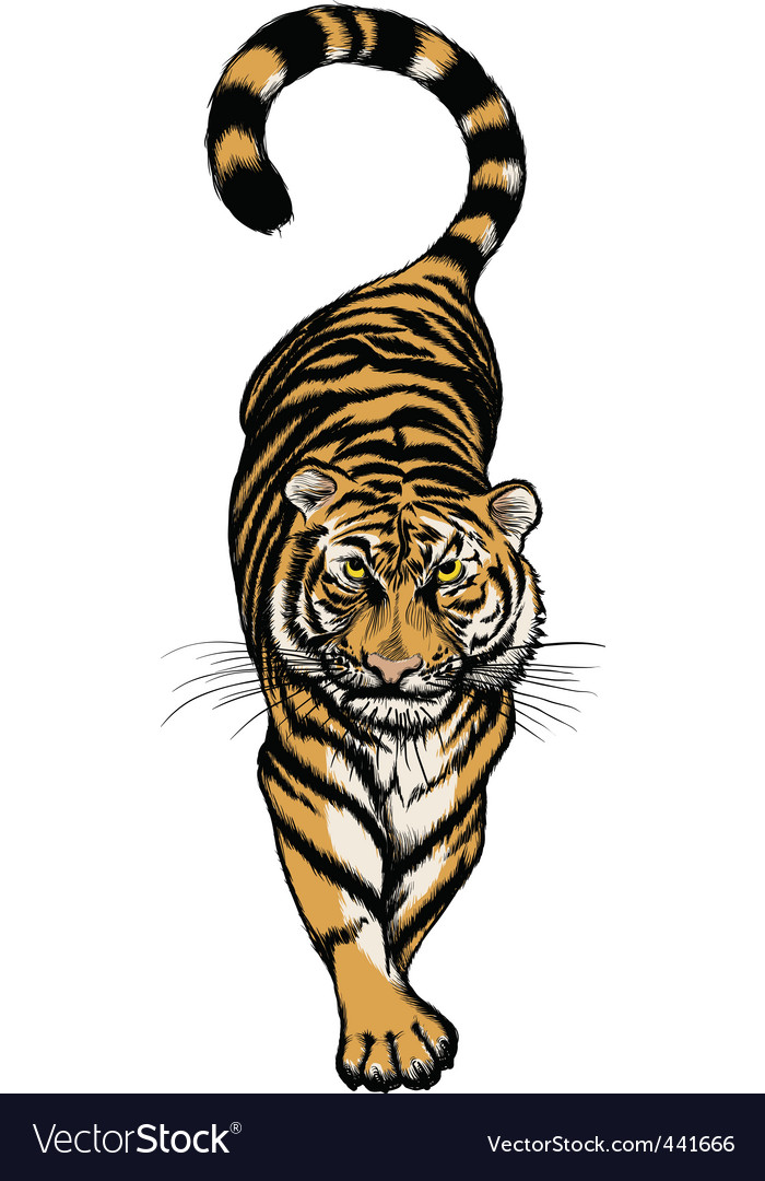 Crouching tiger vector | Price: 1 Credit (USD $1)
