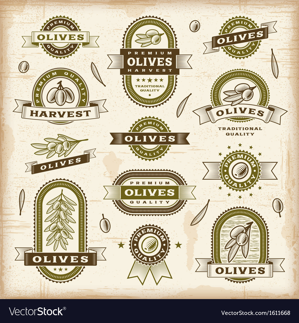 Vintage olive labels set vector