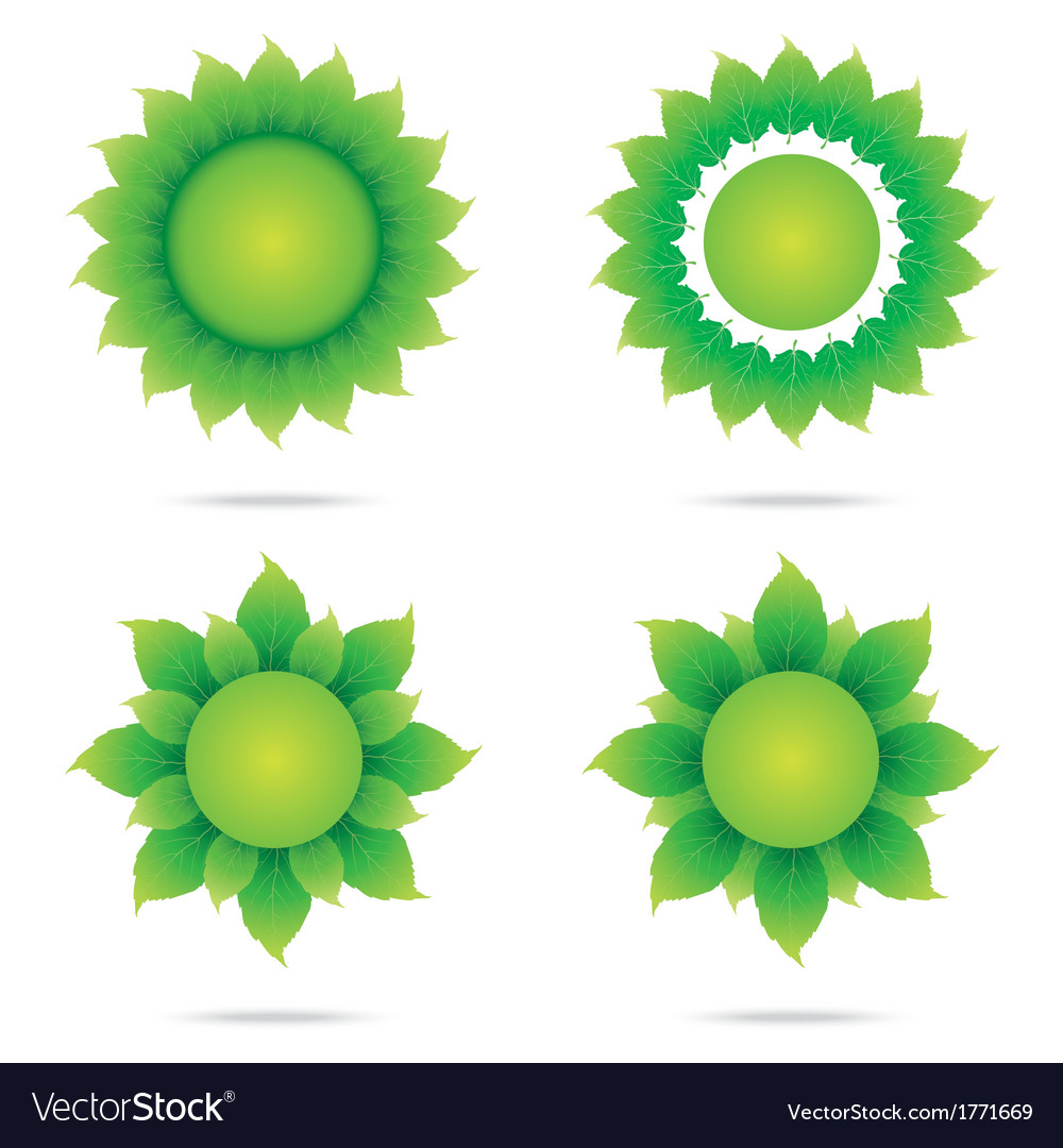 Eco sunflower 2 vector | Price: 1 Credit (USD $1)