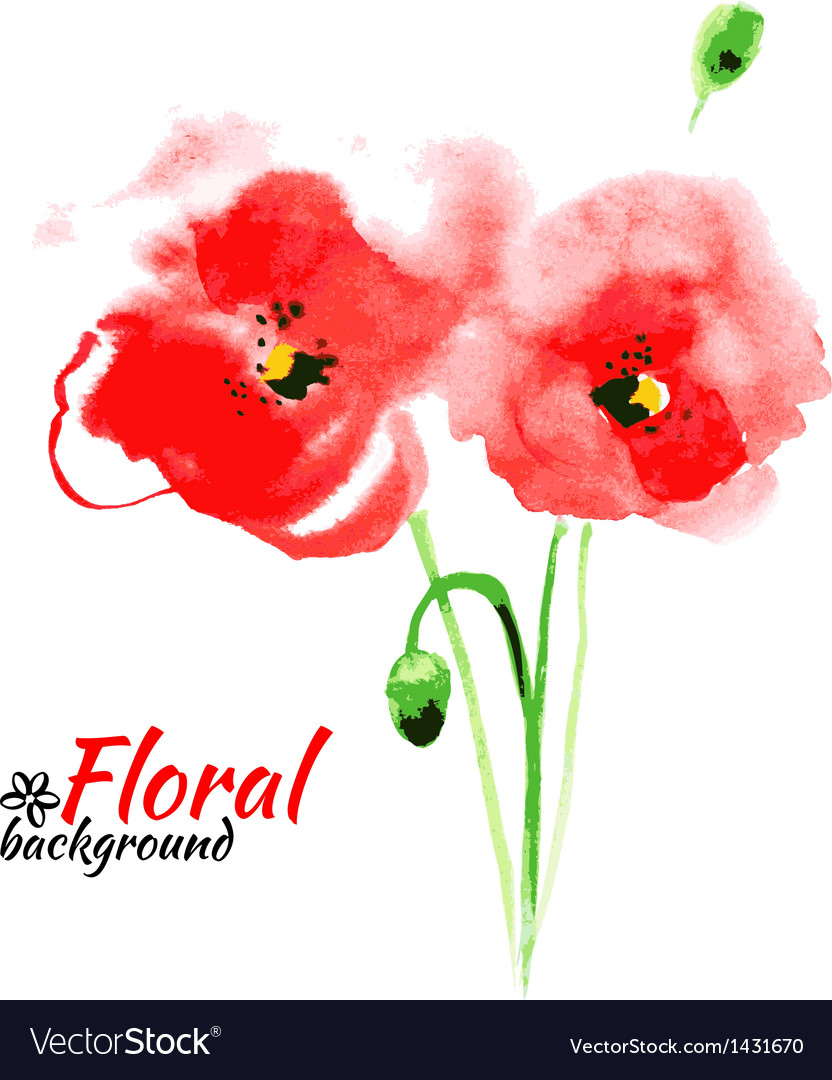 Beautiful watercolor paint red poppy vector | Price: 1 Credit (USD $1)