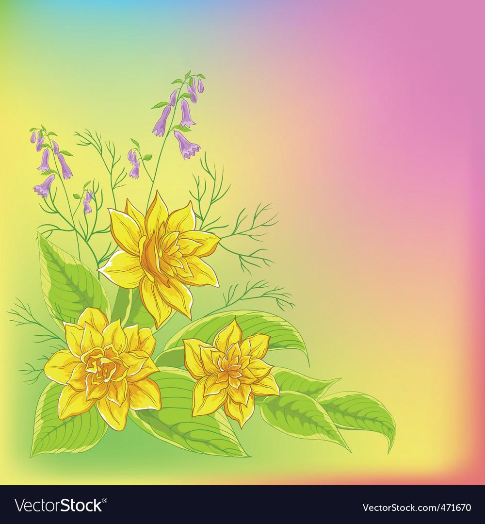 Narcissus vector | Price: 1 Credit (USD $1)